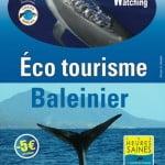 WhaleWatchingGuadeloupe